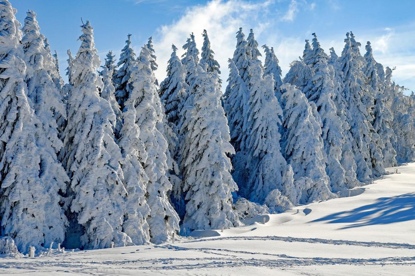 Zimní i letní pohoda na pomezí Rychlebských hor a Jeseníků
