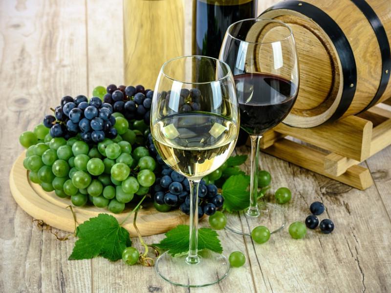 Tradiční postupy při výrobě vína a moderní vybavení