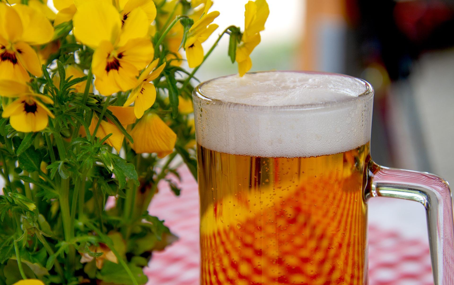 Pivní kultura je u nás bohatá