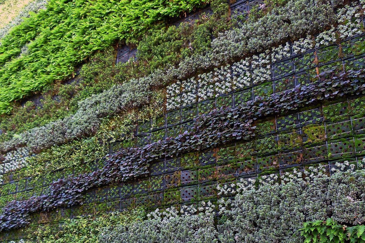 Zelená stěna sluší každému interiéru