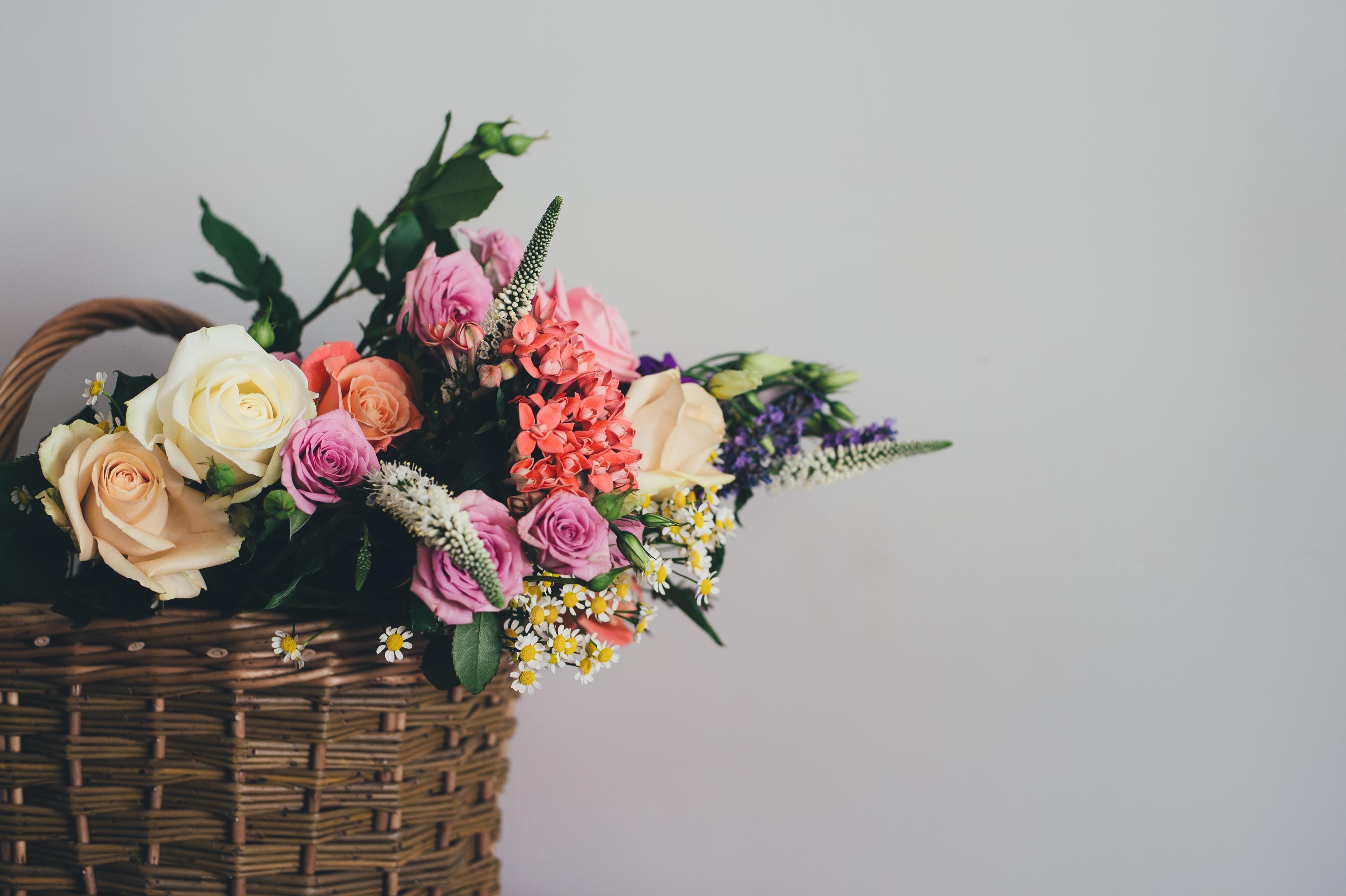 Obyčejným vázám odzvonilo